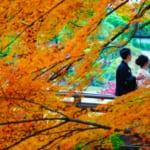 【秋婚向け】秋の結婚式をおしゃれに彩るアイデア集